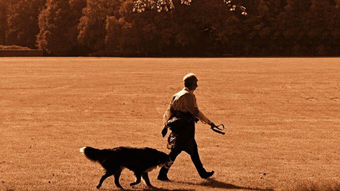 Gåtur med hund